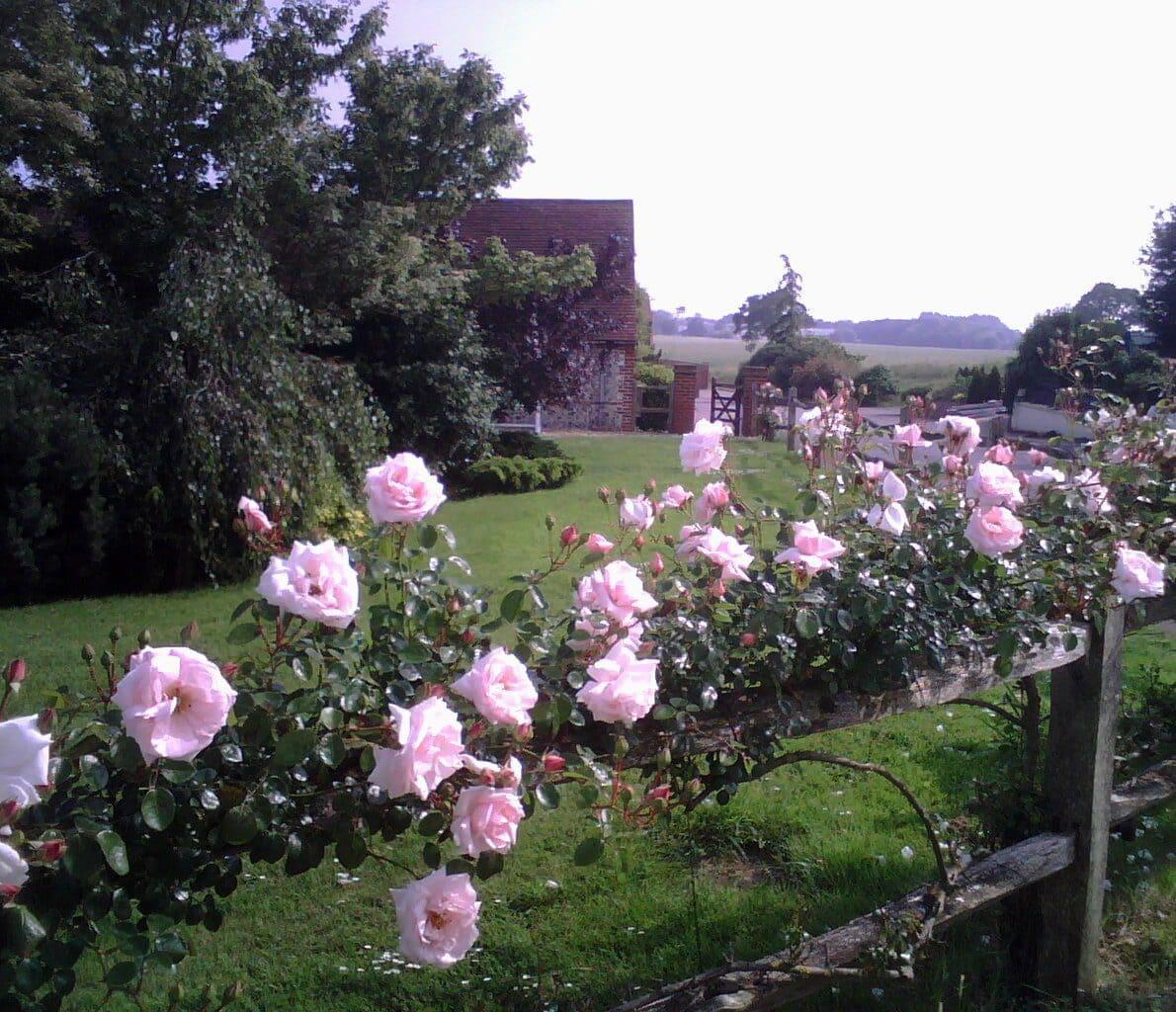 Rose Garden Sussex Retreat