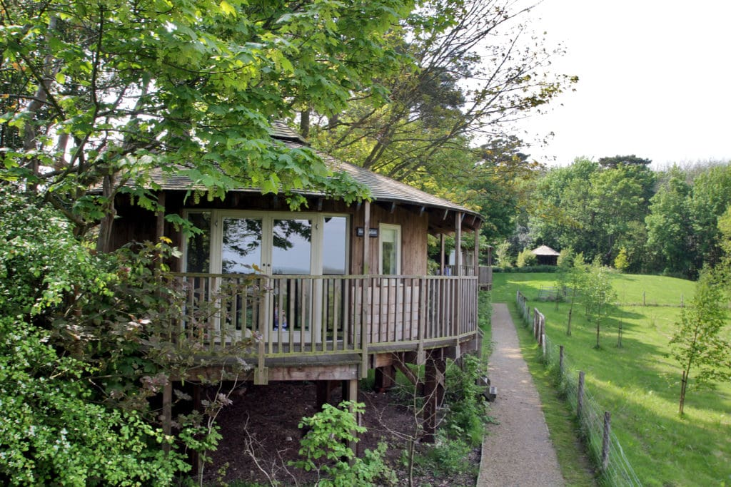 Luxury Tree House Sussex