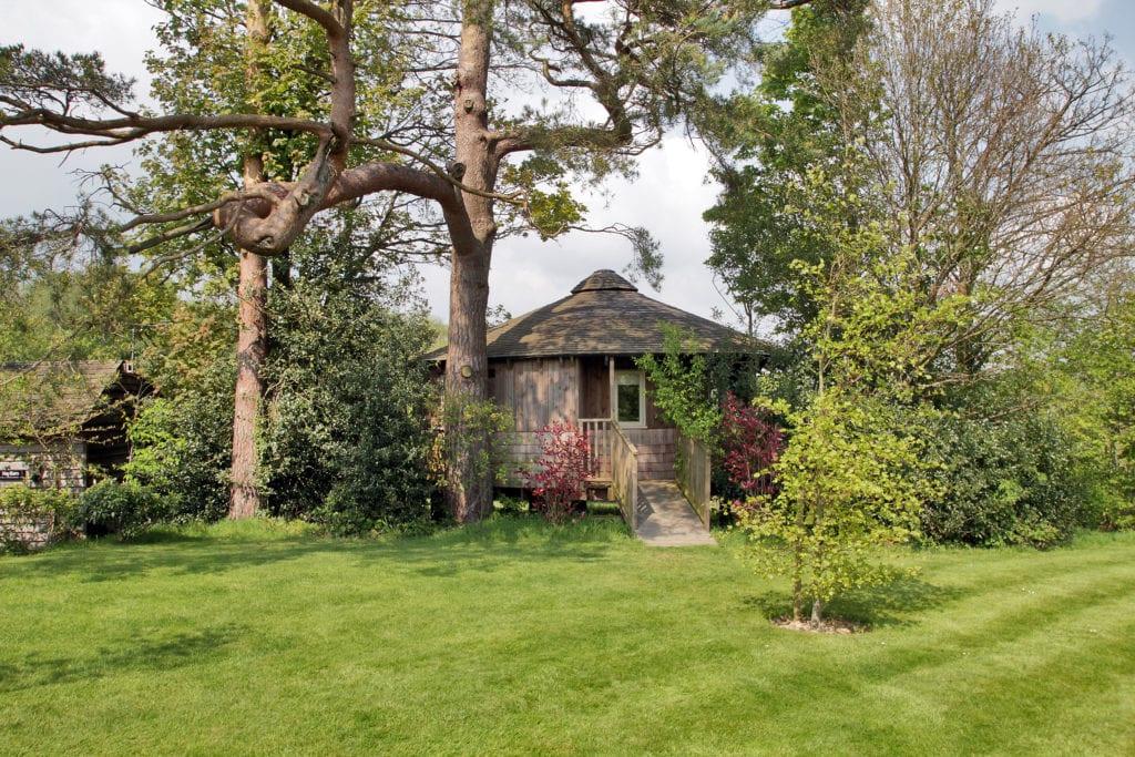 Luxury Tree House Sussex